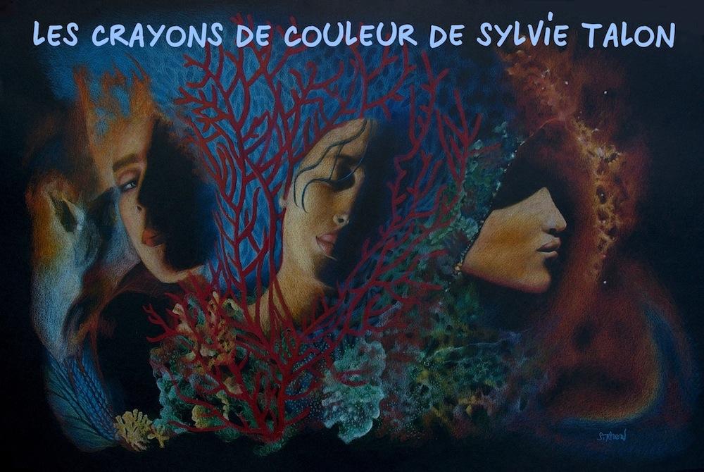 Les crayons de couleur de Sylvie Talon
