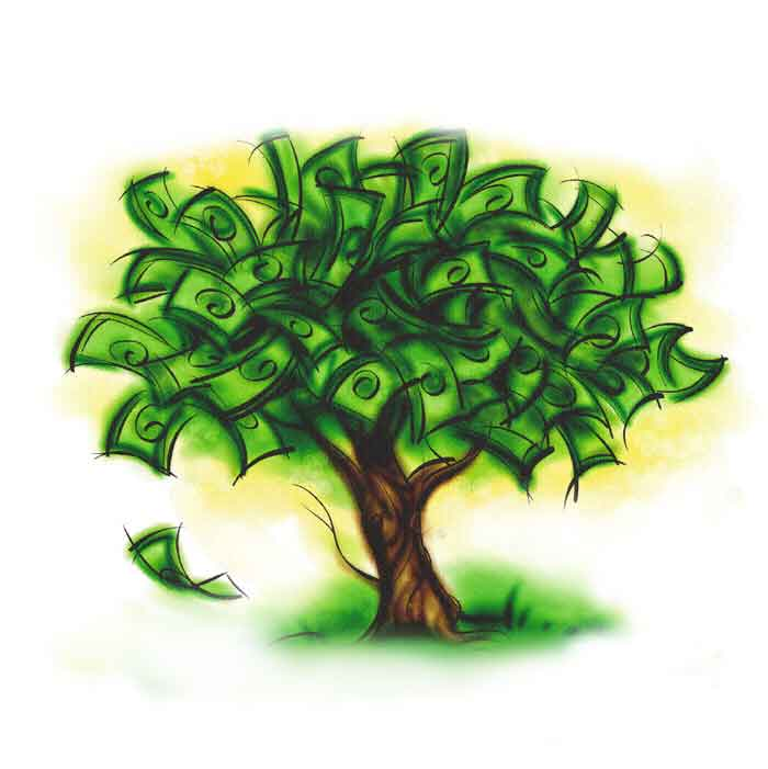 How To Be A Millionaire Money Grows On Trees