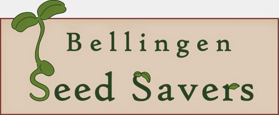 Bellingen Seedsavers