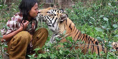 Foto Abdullah Sholeh dan macan bernama Mulan