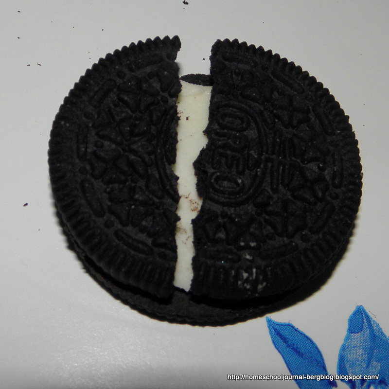 All things beautiful oreo plate tectonics plate tectonics freerunsca Image collections