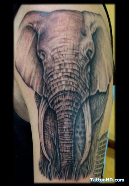 wild tattoos elephant tattoos. Black Bedroom Furniture Sets. Home Design Ideas