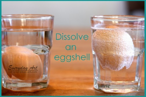 http://www.our-everyday-art.com/2014/01/science-fun-dissolve-eggshell.html