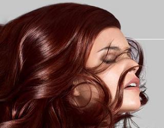 Konkurs 500x krem koloryzujący Palette Salon Colors
