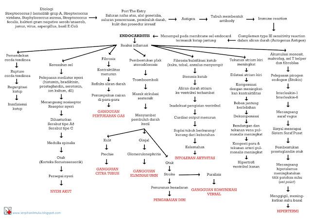 Perjalanan Penyakit Endocarditis Hingga Diagnosis Keperawatan