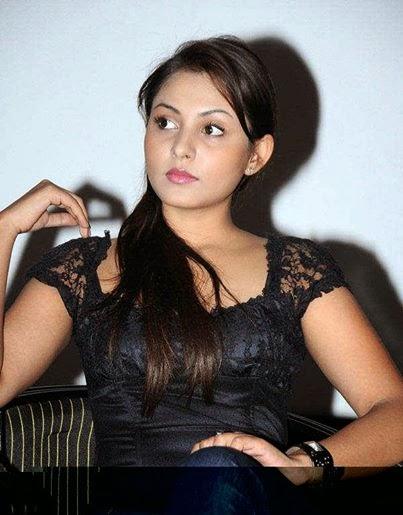 Yo Yo Honey Singh Wife Wiki Details,Name,Images,Wallpapers - Punjabi ...