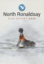 THE 2020 BIRD REPORT is now available to purchase for £20 plus p&p or join as a friend for £20