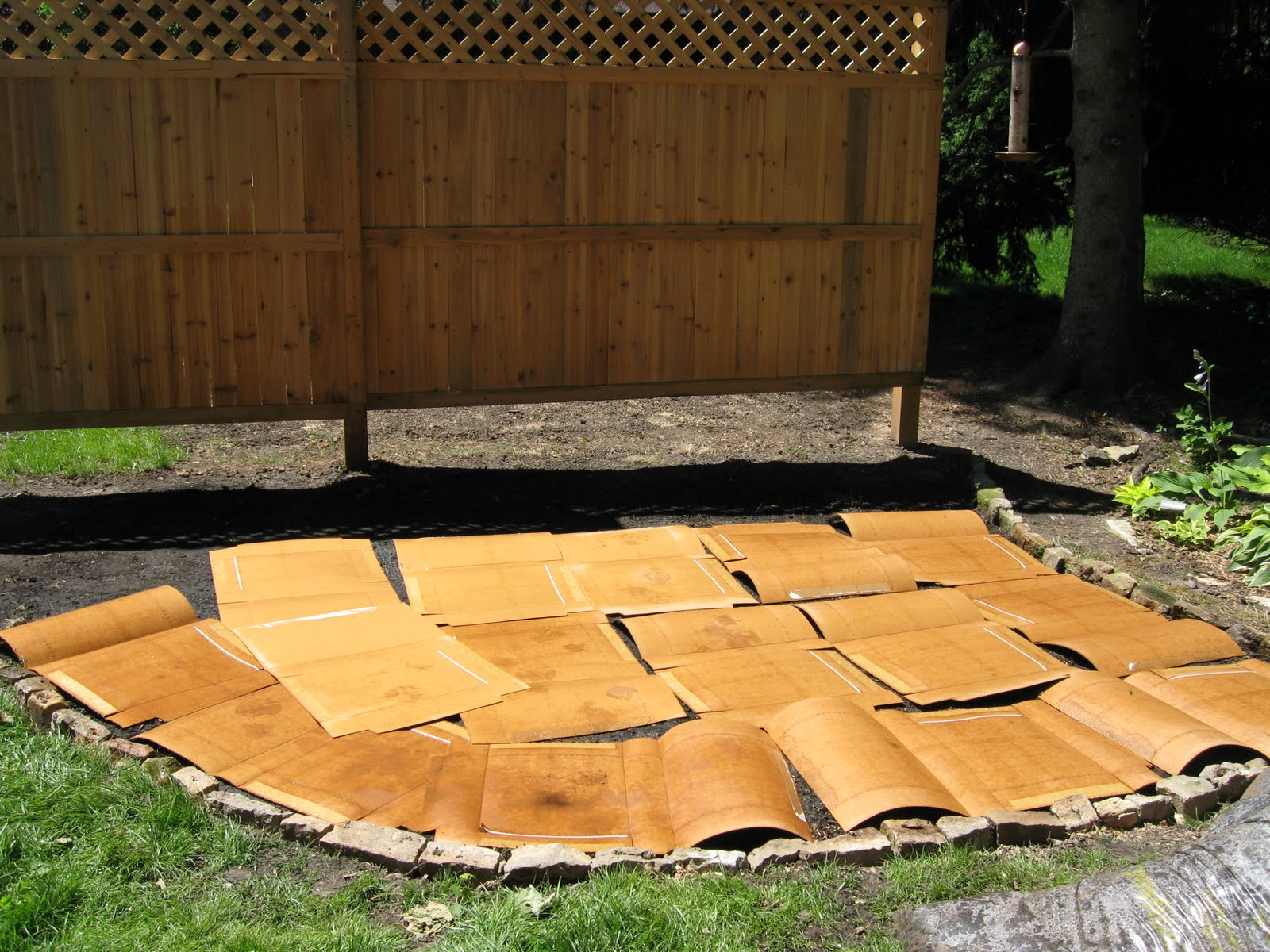 Cheesehead Gardening Using Cardboard To Line Flower Beds Bye