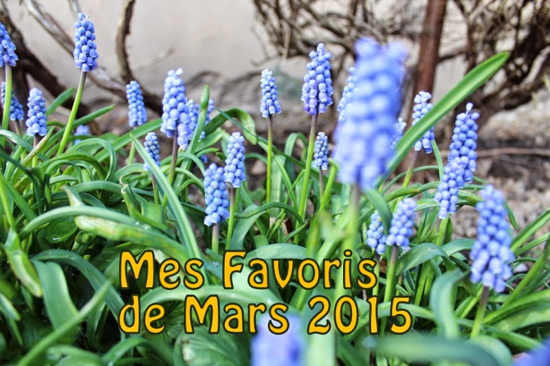 http://www.petitesastucesentrefilles.com/2015/04/mes-favoris-de-mars-2015.html