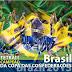 Brasil é Campeão da Copa das Confederações 2013