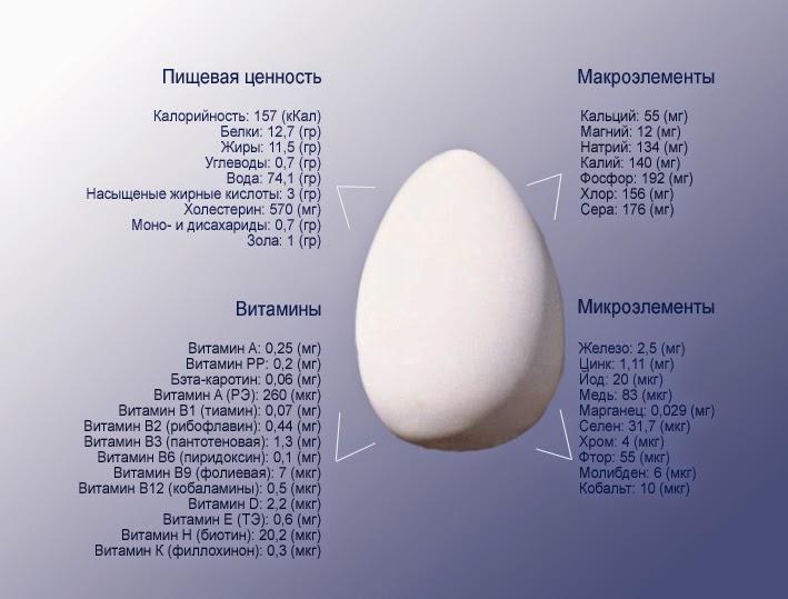 Хранение яиц - состав