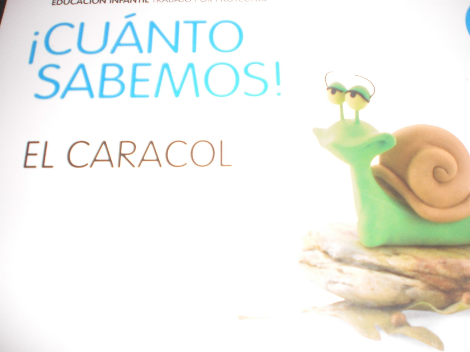 Los caracoles de mi jard n for Caracoles de jardin que comen