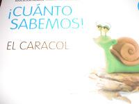 Los caracoles de mi jard n for Caracoles en el jardin