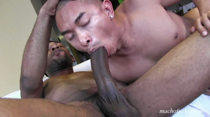 sexogay blackcocks