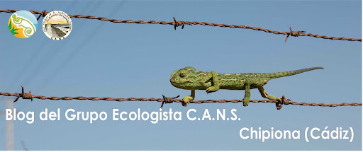 GRUPO ECOLOGISTA C.A.N.S. --CHIPIONA--