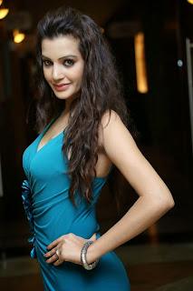 Diksha Panth New  Spicy Picture Shoot Stills006.jpg