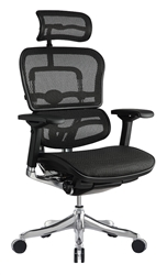 Ergo Elite Chair