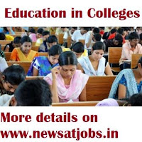 education+in+colleges