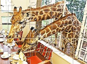 Puzzles de jirafas