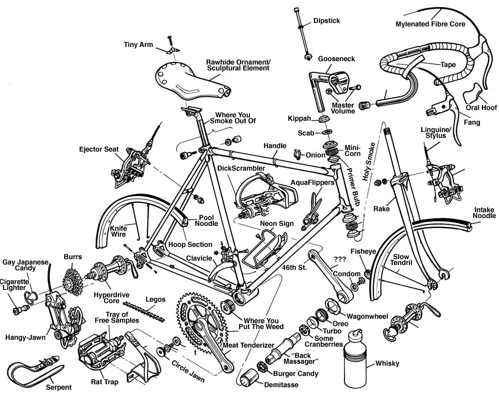 Two Wheels Better: Anatomy of a Bicycle