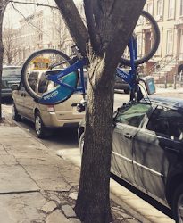 Check out the evergrowing, sometimes bizarre collection of Citi Bike pics on Instagram