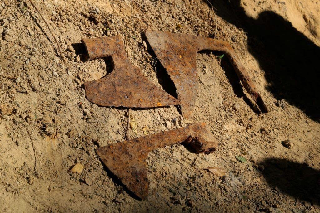 Teutonic battle axes found in Polish forest