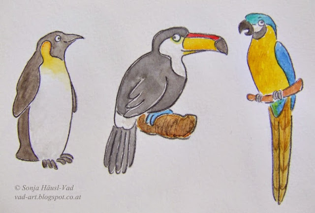 tučňák, tukan, papoušek