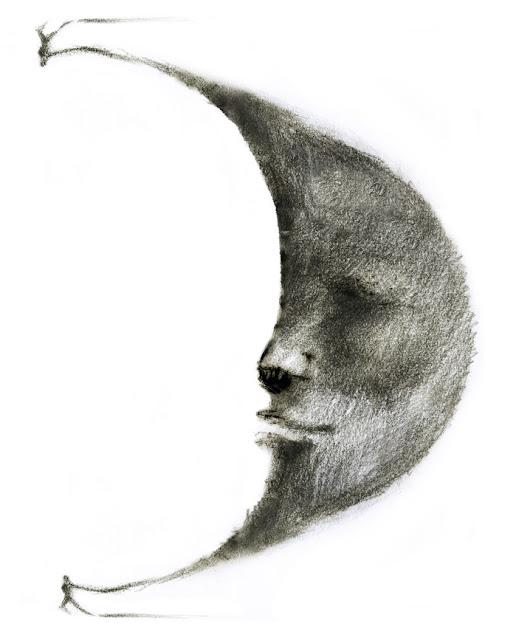 luna francesca ballarini illustrazioni