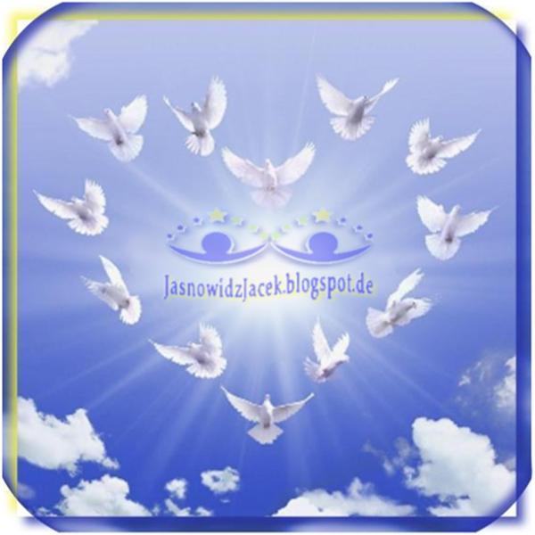 Gołębie białe na niebie w kształcie Serca