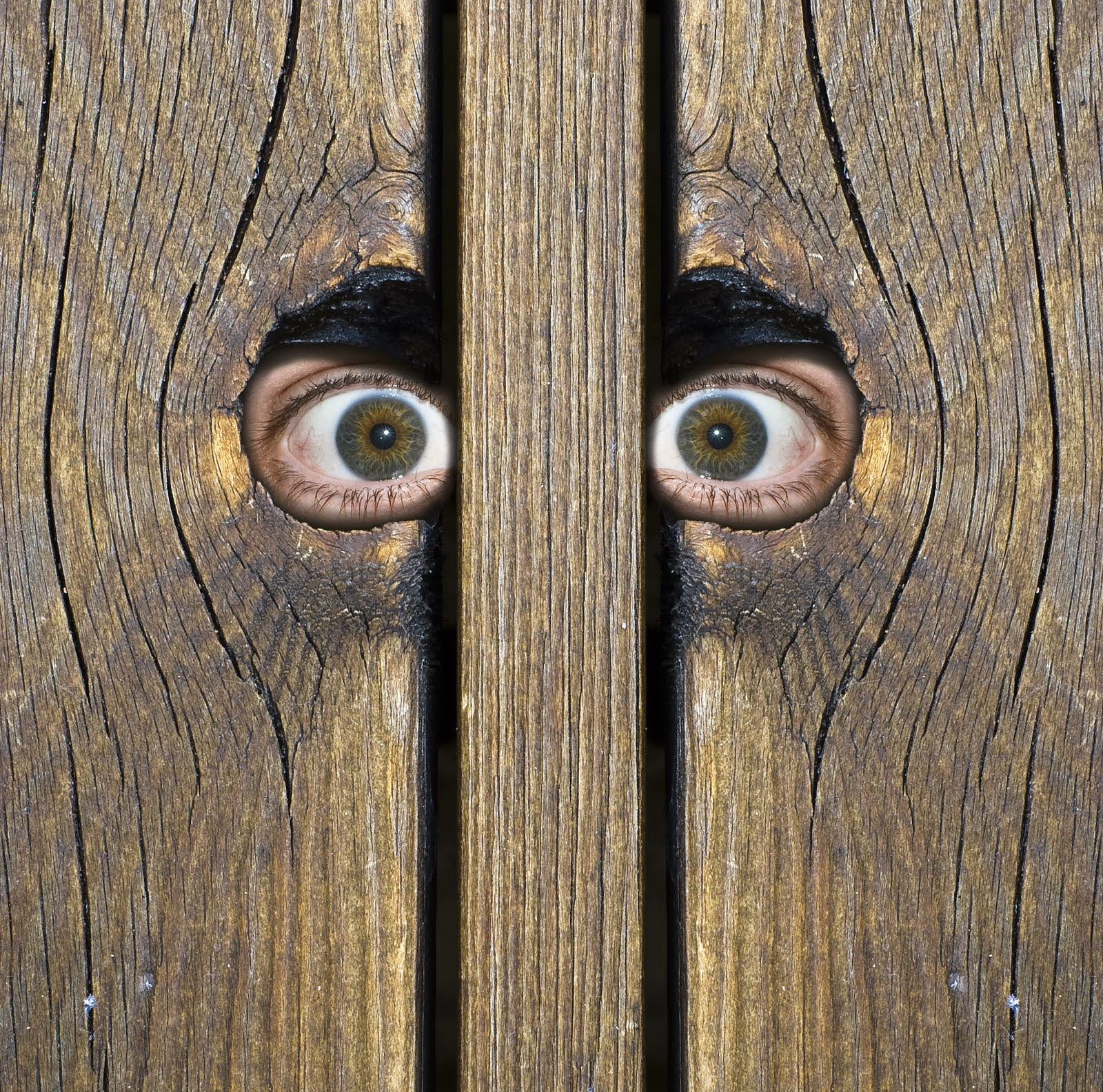 Image result for peeking through a fence