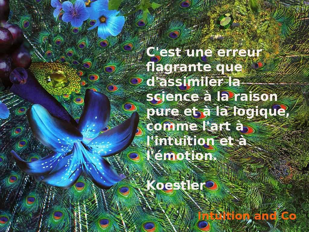 FORMATION - Module 2 - Intuition et Personnalisation - 11 et 12 janvier 2020