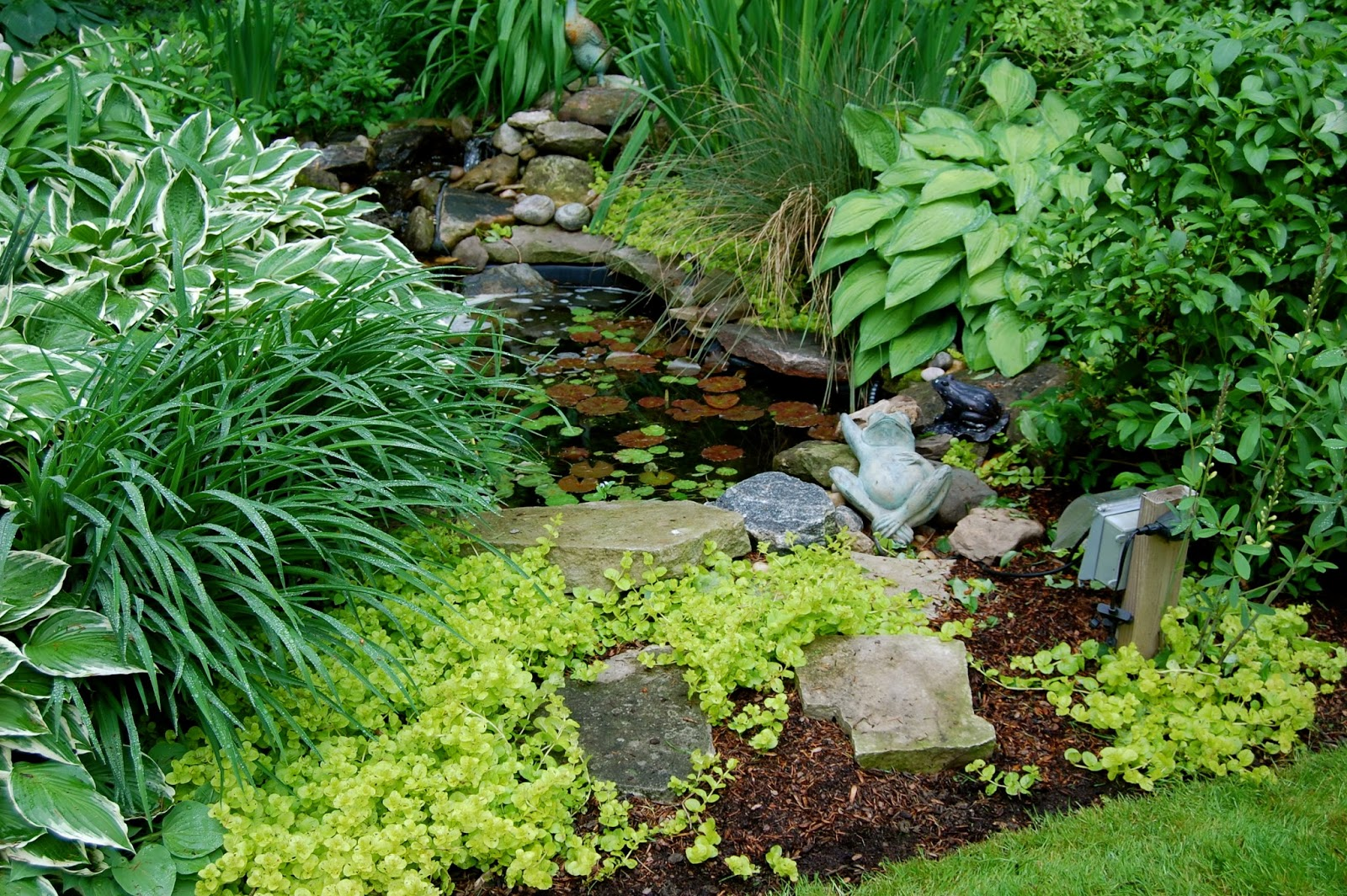 Astrid 39 s garden design the little guys for The garden design sk