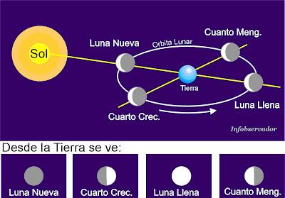 Infobservador las fases de la luna for Q fase de luna es hoy