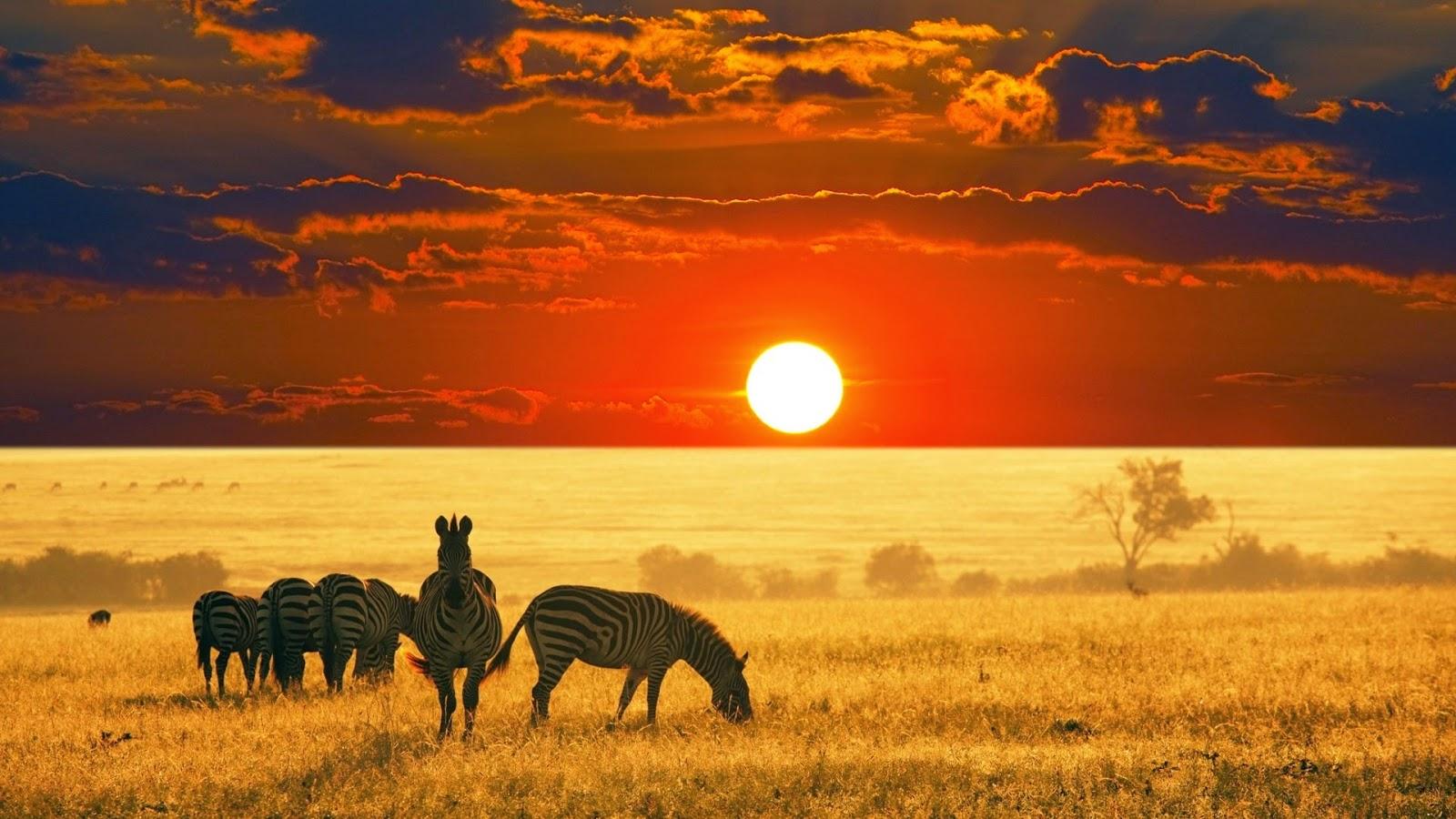The Best of Africa - destinasjoner og attraksjoner