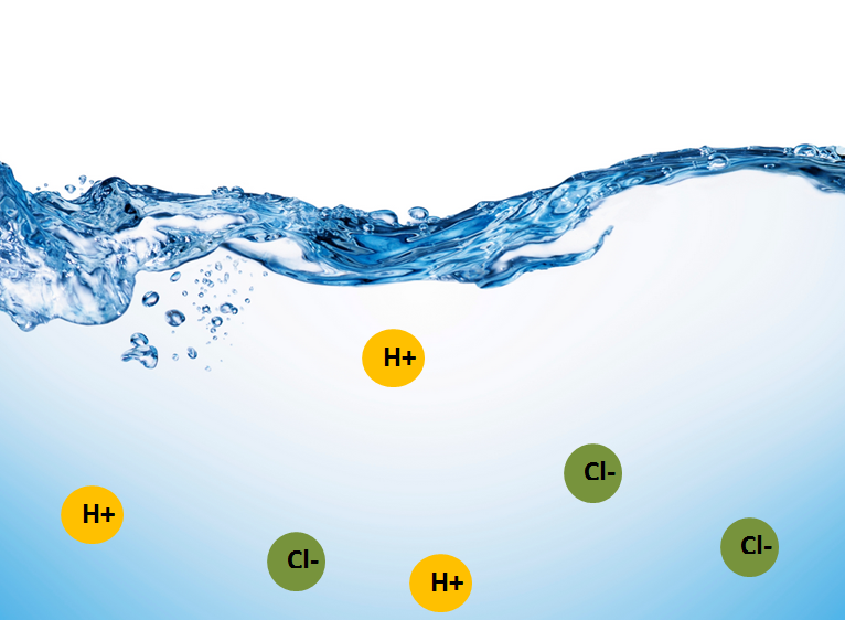 Chemizzle: Acids and Bases I (Concepts / Equilibrium)