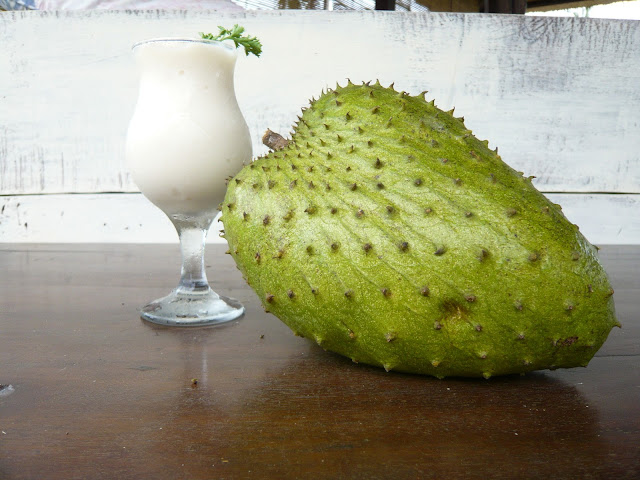 Cancer Cure: Soursop Shows Strong Evidence in Studies