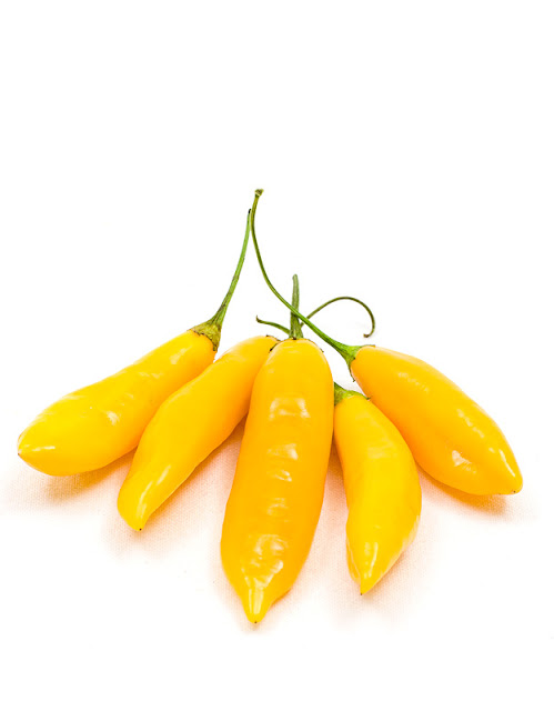 Aji Cito chili pods