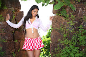 Shilpi Sharma Sizzling pics from Green Signal-thumbnail-1
