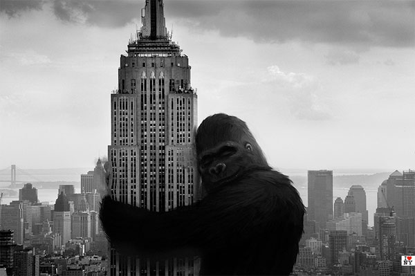 EMPIRE STATE NO CINEMA - KING KONG