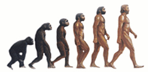 Heredity and evolution