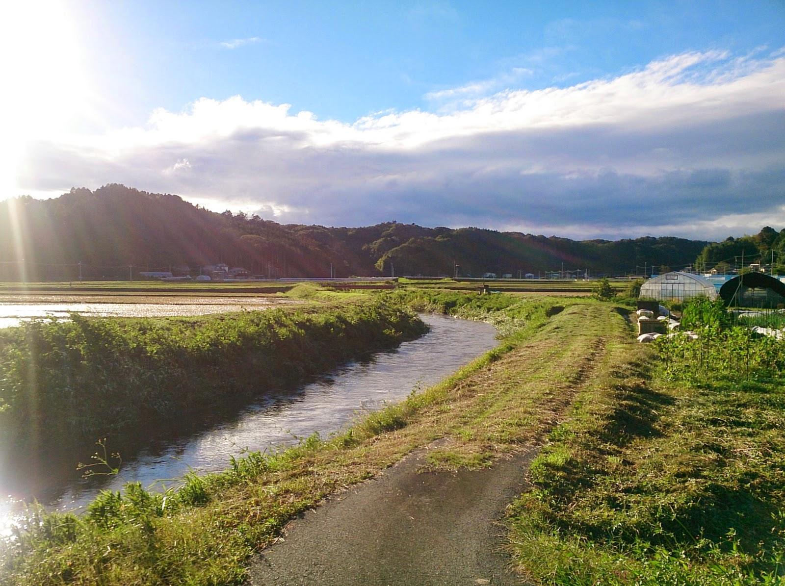 台風後の釜戸川