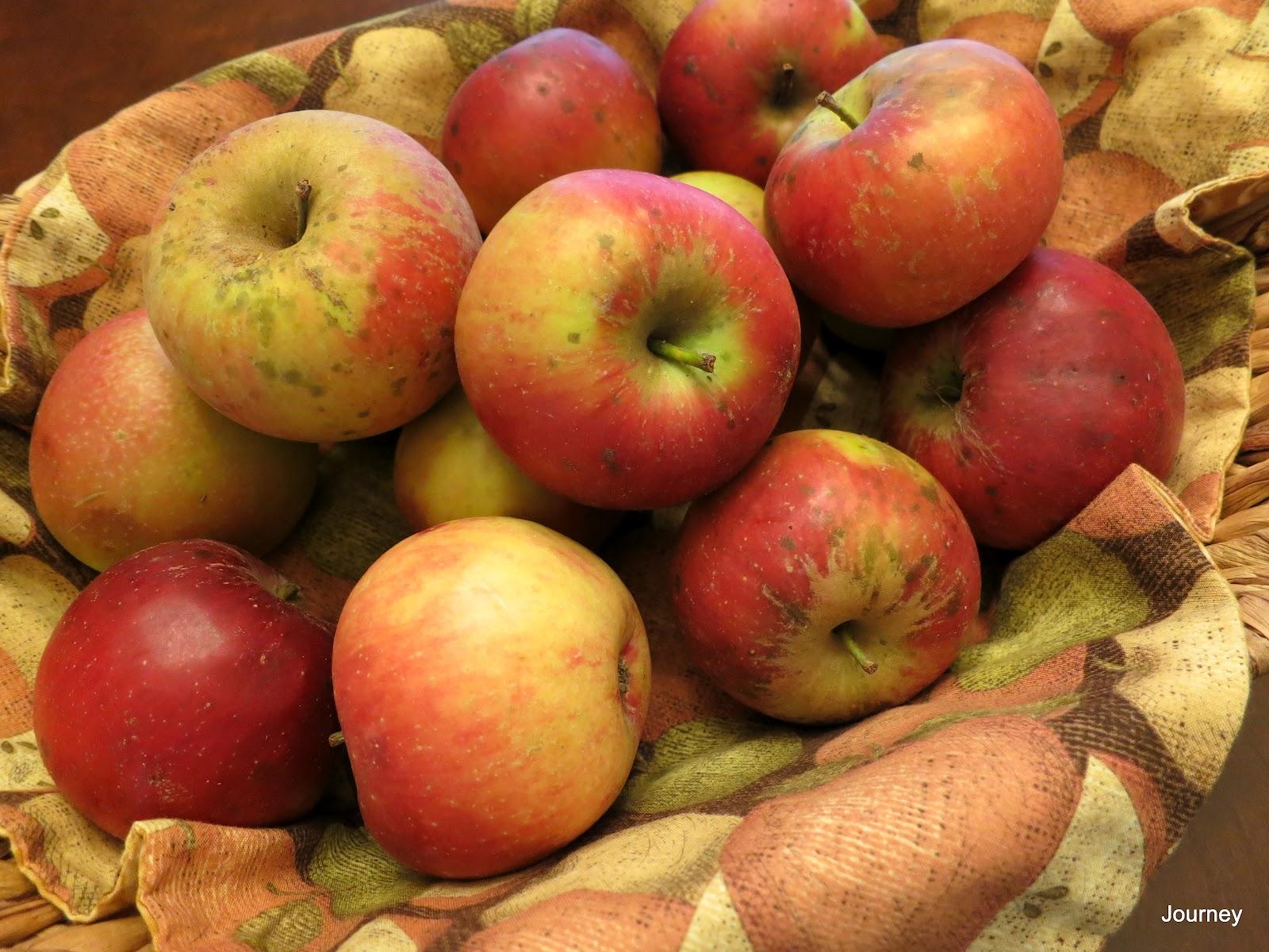 Journey Perfect Apple Pie