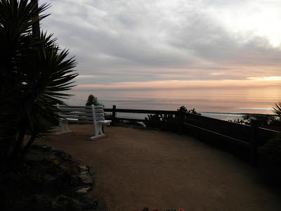 Serene Bench Overlooking Ocean, Photo by Kaliani Devinne, Copyright 2013