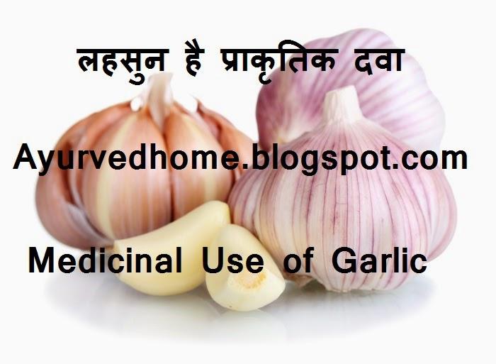 Garlic is a natural medicine in Ayurved लहसुन है प्राकृतिक दवा  Lahsun Ke Gun laabh or Fayde