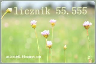 baner - złap licznik 55.555