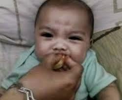 gambar lucu bayi makan jeruk lemon