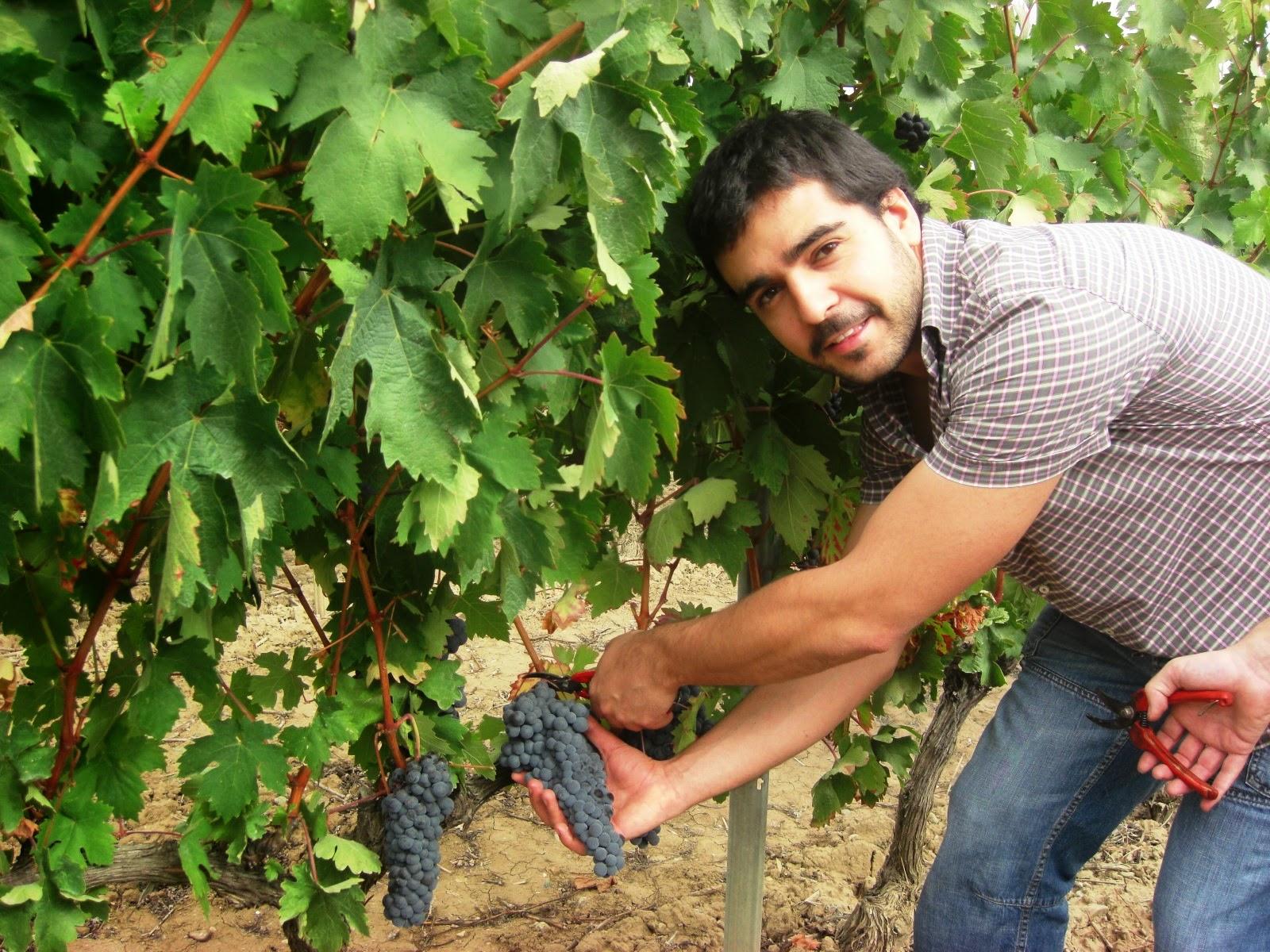 Urbina Vinos Blog