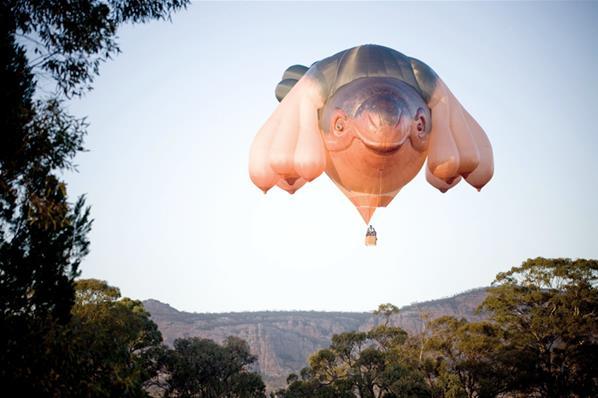 http://007beritaterkini.blogspot.com/2013/05/foto-balon-monster-di-australia.html