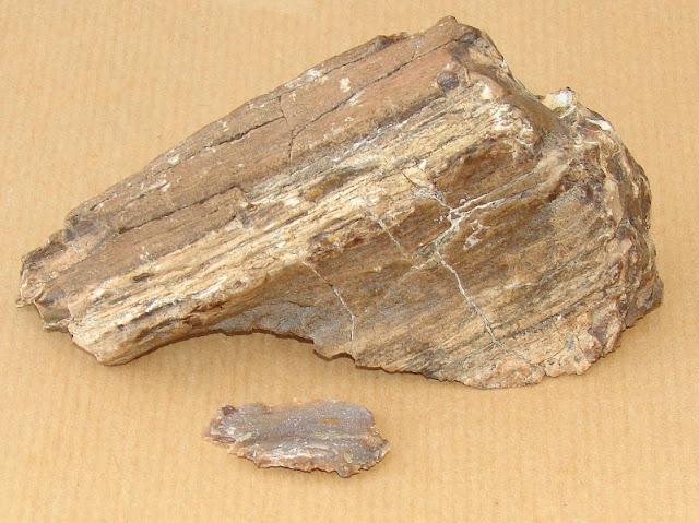Lemn pietrificat - piesele mici