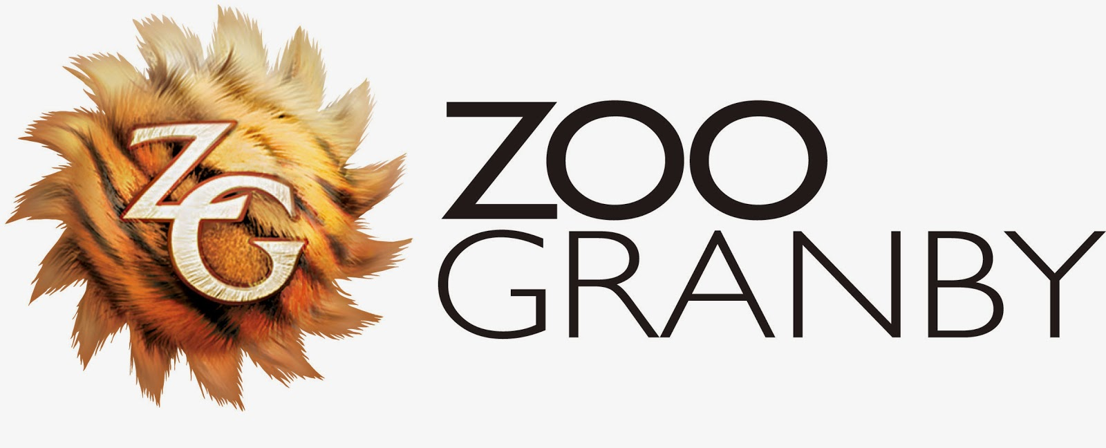 Escapade au zoo et les essentiels!